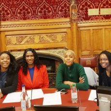 House of Lords Meeting Harnesses Community Social Capital to Address Racial Inequality in Education